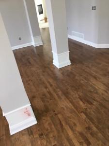 Maple Floor 4