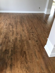 Maple Floor 5