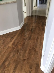 Maple Floor 6